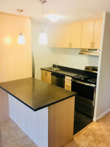 Oct. 15th - Modern newly designed 1 Bedroom close to Dalhousie