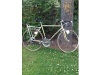 """Puch Cavalier Vintage 21"""" Racing Cycle 10 Speed Gears Rear Pannier"""