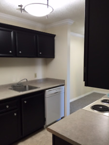 River Trails/Lawson Mall - 2 Bed with 1.5 Bath + Den