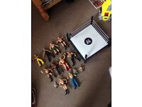 WWE/WWF wrestlers figures and ring toys