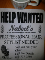 Help wanted professional hairstylist