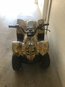 Coolster ATV