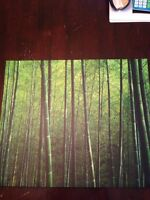Bamboo canvas picture