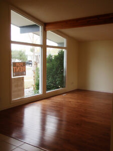Fully Renovated, Cat Friendly, 3 Bedroom Suite in Lovely McLeod