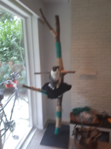 Must Sell !!  Cat tree