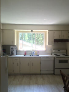 Students! Large 4 Bedroom Apartment Close to Queen's!