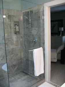 "3/8"" Tempered Glass Shower Door"