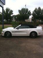 2009 Mustang California Special