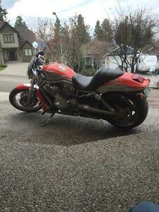 2007 Harley-Davidson® Screamin' Eagle V-Rod, limited edition Regina Regina Area image 2