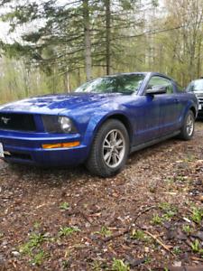 Mustang Sonic Blue 2005