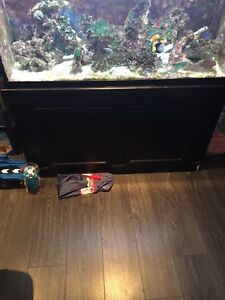 90 gallon salt water tank, stand, fish and live rock