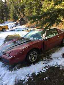 Trans Am  1982 T-roof  - Cross over fire injection Prince George British Columbia image 2