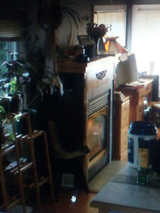 Trade Propane Fireplace with Wood Stove or Furnace