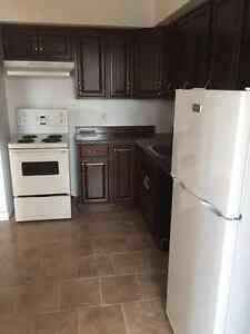 LARGE RENOVATED 2 BR 1.5 BATHROOMS STEPS FROM SMU, DAL & DWNTWN