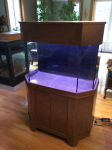 Beautiful Aquarium 65 Gal *plug and play*