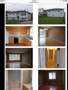 House for rent in clarenville