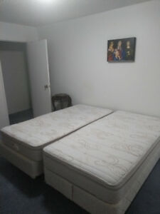 Two Twin Sized Beds, very lightly used