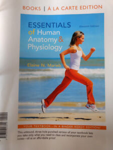 Essentials of Human Anatomy and Physiology Eleventh Edition