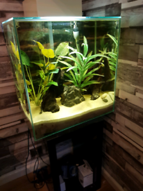 Fluval edge 46l tank with stand