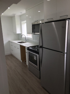 Brand New 2 Bedroom Suite