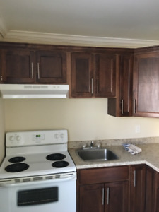 1 totally renovated 1 bedroom apartment
