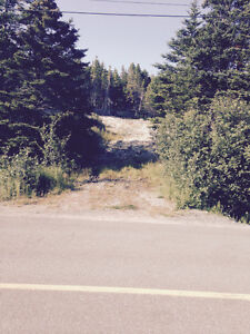 Beautiful 1/2 acre lot in Salmonier St. John's Newfoundland image 1