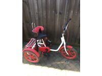 QUEST 88 SPECIAL NEEDS TRIKE