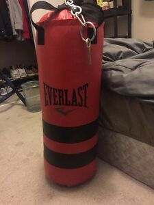 Everlast Punching Bag w/ Boxing gloves