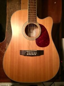 Cort 12 String Electric Acoustic w/Hardcase