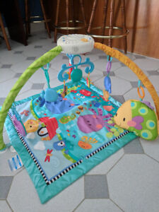 Fisher Price Discover and Grow Playmate/Gym