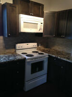 Inner city Mount pleasant character bungalow *New Kitchen*
