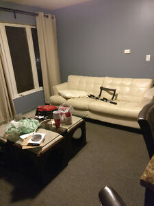 1/5 Rooms Student Apartment 318 Lester Street Kitchener / Waterloo Kitchener Area image 1