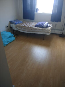Looking for Indian female Roommate for 2BHK