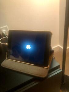 iPad Mini (Space Grey)