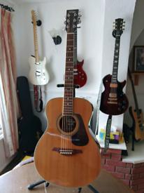 Acoustic Guitar Vintage V300