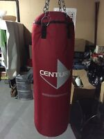 Century punching bag and Everlast gloves for sale.