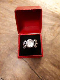 Solid silver and paste ring