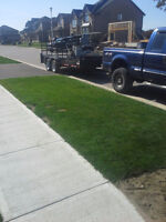 Lawn Care Service, Mowing and Trimming, Call now
