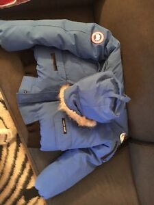 Blue canada goose limited edition