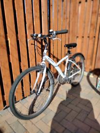Between bicycle