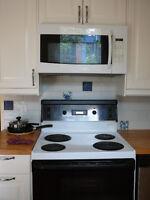 Four micro-onde avec hotte pour cuisinière