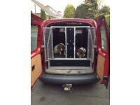 Dog transport box