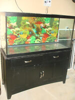 90 GALLON TANK AND STAND FOR SALE