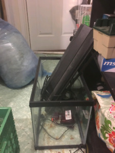 20 and 10 gallon tanks and animal cages