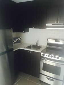 PET FRIENDLY NEWLY RENOVATED STUDIO STYLE UNIT FOR JUNE!!