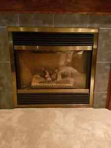 Majestic Gas Fireplace Buy Amp Sell Items Tickets Or Tech