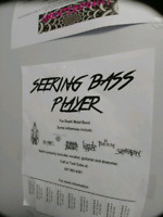 Searching for talented bass player