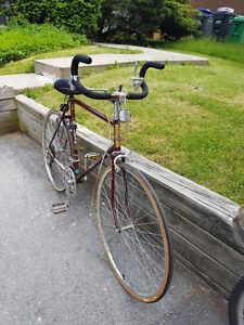Raleigh Endurance Road Bike