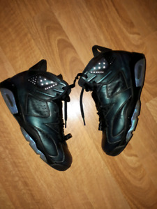 Air Jordan 6 All Star/Chameleon size 10