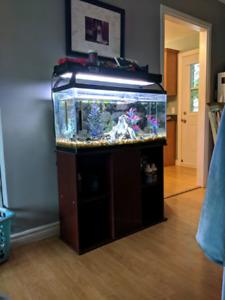 50g Fish tank